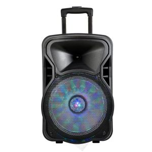 15 Inch Wireless Sound Systems Portable Rechargeable Trolley Speaker Plastic Active Speaker Box Cx-15D pictures & photos