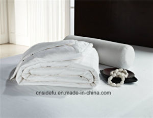 Soft Home Hotel Polyester Duvet Comforter Summer Quilt pictures & photos