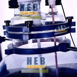 HB-100L Multi-Function Reactor/Single Layer Glass Reactor pictures & photos