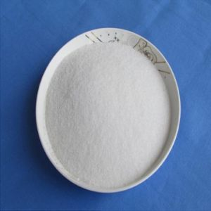 Your Beat Supplier of Tigecycline CAS 220620-09-7 pictures & photos