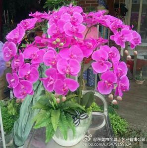 Artificial Flowers of Orchid 109cm Gu922220407 pictures & photos