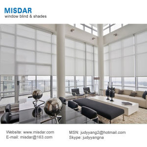 Made to Measure Motorized Roller Shading System pictures & photos
