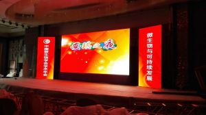 Indoor P3.91 Slim LED Display Screen for Stage pictures & photos