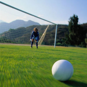 Artificial Grass Sports Flooring for Football Grass pictures & photos