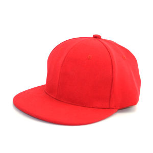 2013 6 Panel Leather Brim Snapback Caps Wholesale pictures & photos