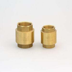 Brass Spring Check Valve (Hx-6002) pictures & photos