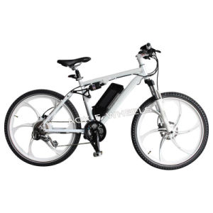 New Design Lithium Battery Electric Bike (TDE-035F) pictures & photos
