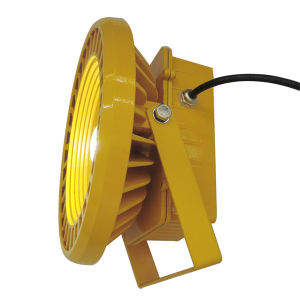 100W Wholesale Explosion Proof LED Flood Light pictures & photos