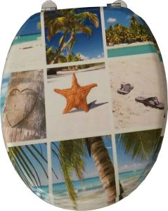 Printing Moulded Wood Toilet Seat (the sea scenery) pictures & photos