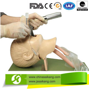 Advanced Child Tracheal Intubation Model (CE/FDA/ISO) pictures & photos