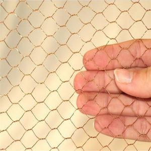Galvanized Hexagonal Wire Mesh Chicken Mesh pictures & photos