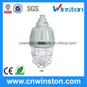 Explosion Proof Lamps Indoor Oil Light (BAD61-A) pictures & photos