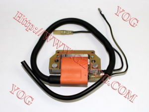Yog Motorcycle Parts Motorcycle Ignition Coil for C100 Dy100 (BOBINA DE ENCENDIDO PARA MOTOCICLETAS) pictures & photos