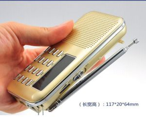 Bible Chiristian Portable Amplifier USB TF MP3 FM Radio Player pictures & photos