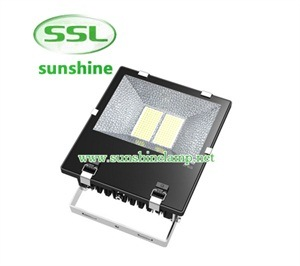 150W LED Flood Light for Meanwell Driver