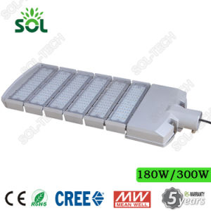 50W 100W 150W 200W 250W 300W LED Street Light with Ce RoHS and 5 Years Warranty