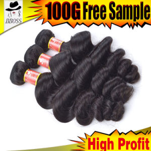 Competitive Price of Brazilian Virgin Human Hair pictures & photos
