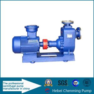 6inch 5kw Mini Self Priming Water Pump Manufacturer pictures & photos