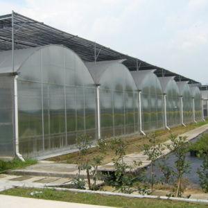 Hot Sale Agricultural Farm Polycarbonate Vegetable Greenhouse pictures & photos