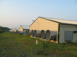 2016 Prefab Poultry House with Full Set Poultry Equipments pictures & photos