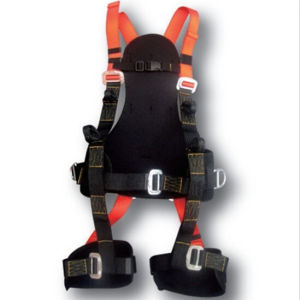 Full Body Harness, Fall Protection Harness, Nylon Strap Safety Harness pictures & photos