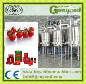 Tomato Paste Production Line /Machine pictures & photos