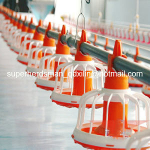 Hot Sale Poultry Farm Equipment for Broiler Chicken Farm pictures & photos