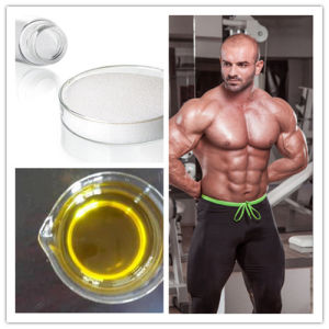 Anabolic Steroid Hormone Sustanon 250 for Muscle Building pictures & photos
