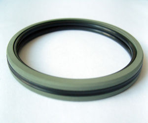 Aq-Piston Seals Application in Standandar Cylinders Piston Accumulators pictures & photos
