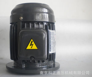(China Manufacturer) Hydraulic Electric Motor -5HP-4p Spline