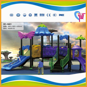 Factory Price Lovely Plastic Outdoor Playground with Big Slide (A-15027) pictures & photos