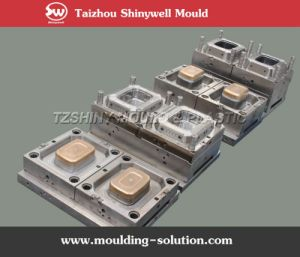 1000ml Square Ice Cream Container Mould pictures & photos