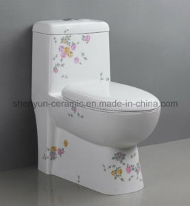 One-Piece Toilet Color Bathroom Water Closet (a-053 pictures & photos