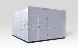 CE Approved Cold Room for Ice Cream Storage pictures & photos
