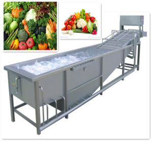 SUS 304 Professional Vegetable Fruit Washer Machine pictures & photos