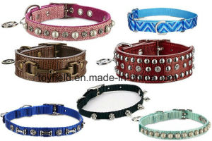 Pet Product Lead Supply Leash Cat Dog Collar pictures & photos