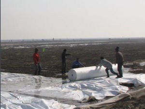 Polypropylene Geotextiles for River Construction pictures & photos