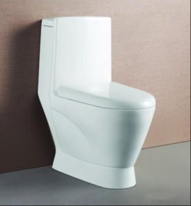 Siphonic One Piece Sanitary Ware/Ceramic Toilet/Bathroom Toilet (680X380X760mm) pictures & photos