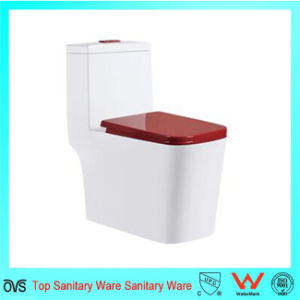 Sanitary Ware Bedroom Toilets pictures & photos