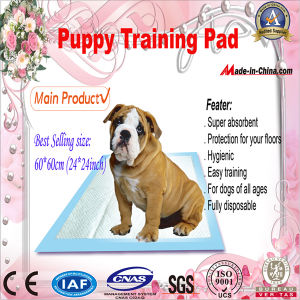 60*60 Super Absorbent Puppy Training Pads with Gel pictures & photos