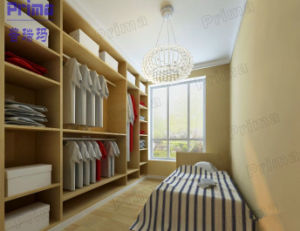 Factory Custom Closets Design Environmental Safety Closets pictures & photos