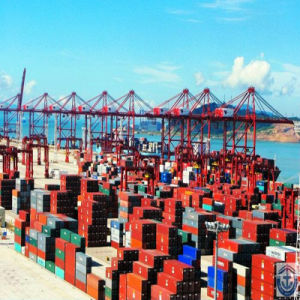 Sea Freight From Foshan pictures & photos