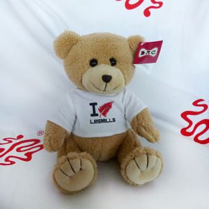 Plush Teddy Bear T-Shirt Bear Toy pictures & photos