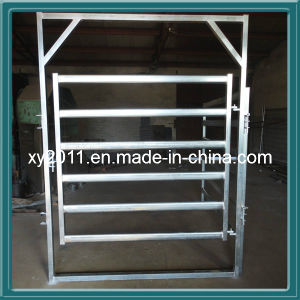 Welded Wire Mesh Panel (xy26) pictures & photos