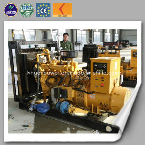 CE Approve Power Biogas Small Generator pictures & photos