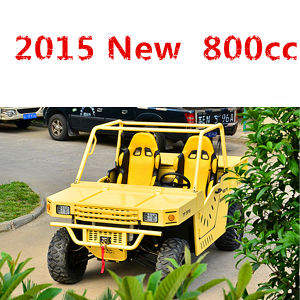 EPA Approved 800cc China UTV (DMU800-04)