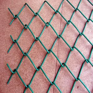 2016 Hot Dipped Galvanized Chain Link Fence pictures & photos