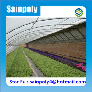 Family Solar Greenhouse with Complete Control Systems pictures & photos