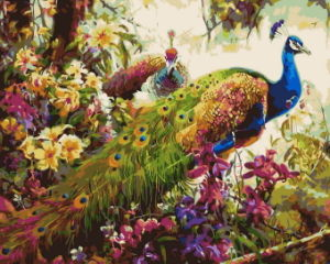 Paintboy DIY Digital Beautiful Peacock Paintings by Numbers on Canvas Framed pictures & photos