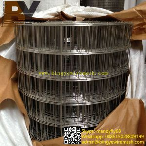 Isolation Wall Stainless Steel Welded Wire Mesh pictures & photos